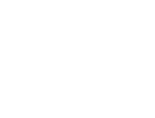 Member of the Alink-Argerich Foundation - Logo